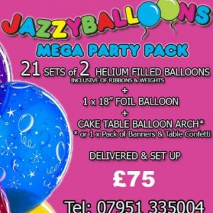 mega party package