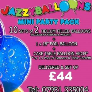 mini party package